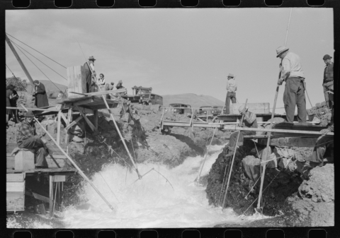 """Russell Lee, """"Indians fishing for salmon, Celilo Falls, Oregon,"""" U.S. Farm Security Administration, 1941."""